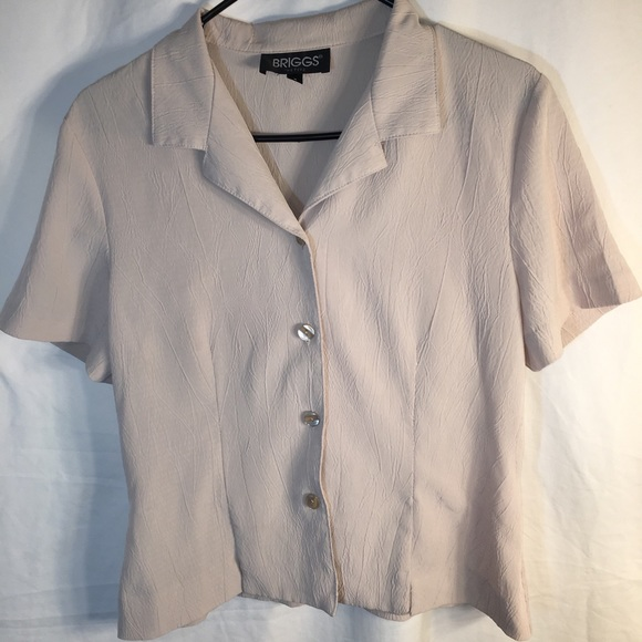 Size Small Nice Blouse by Briggs of New York!